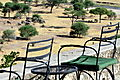 View From Terrace of Tarangire Safari Camp
