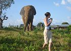 Ghana Wildlife Safari - Walking with Elephants