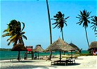 Selous Safari and Mafia Island Beach Holiday