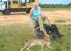 Accessible 12 day Kruger & Cape Town tour