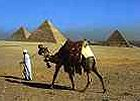 Honeymoon Holiday in Egypt