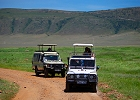 Weekend  Safari Lake Manyara and Ngorongoro Crater