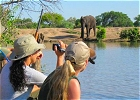 Kruger Park BIG 5 & Astronomy - Small Group ECO Safari